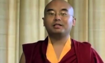 Jij bent de baas over die aap in je hoofd: Film met Minquer Rinpoche